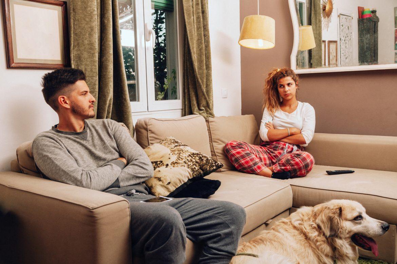 ¿Quién se queda con la custodia del perro en caso de divorcio?